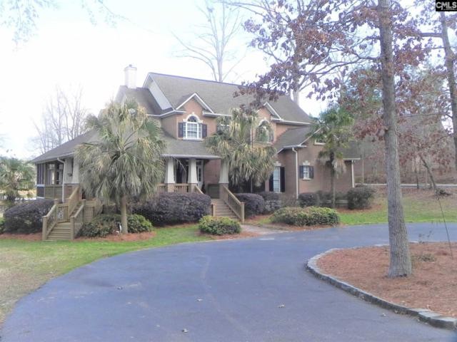 213 Hiller Road, Chapin, SC 29036 (MLS #441945) :: Home Advantage Realty, LLC