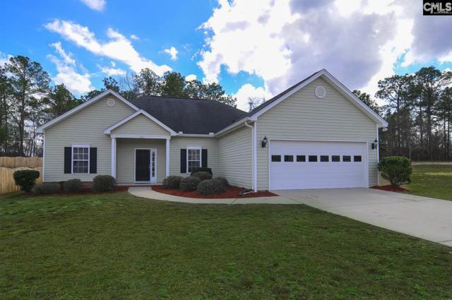 111 Raspberry Hill Court, Lexington, SC 29073 (MLS #441980) :: Home Advantage Realty, LLC