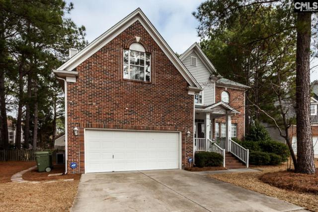 110 Sesqui Trail, Columbia, SC 29223 (MLS #441983) :: Home Advantage Realty, LLC