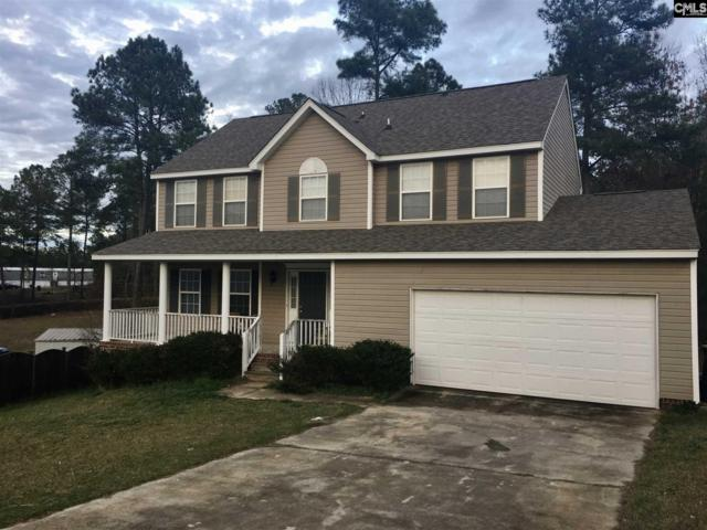 421 Smokey Joe Court, Lexington, SC 29073 (MLS #442596) :: EXIT Real Estate Consultants