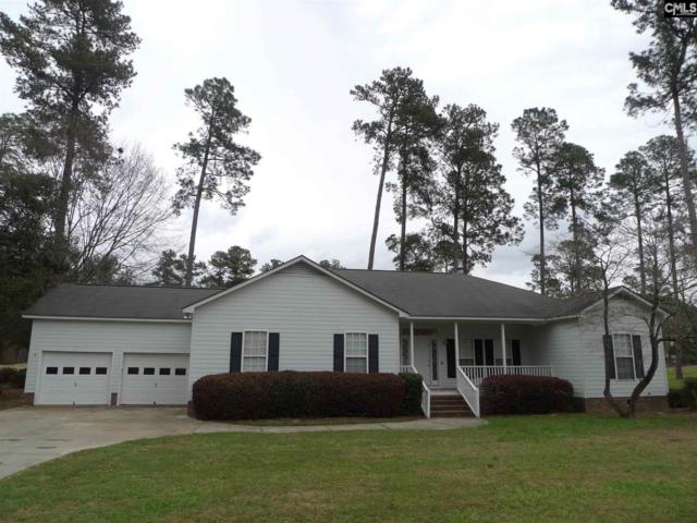 149 Saluda Drive, Santee, SC 29142 (MLS #442608) :: EXIT Real Estate Consultants