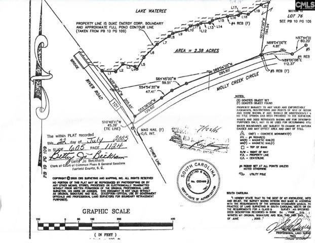 Lot Adjoining 109 Molly Creek Circle, Ridgeway, SC 29130 (MLS #443078) :: RE/MAX Real Estate Consultants