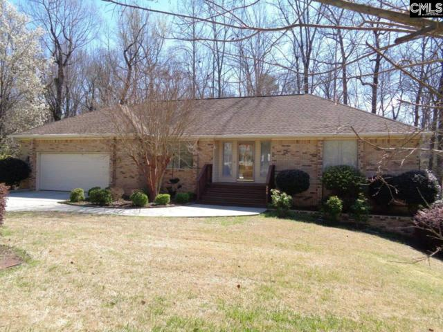316 Longbow Court, Columbia, SC 29212 (MLS #443130) :: The Olivia Cooley Group at Keller Williams Realty