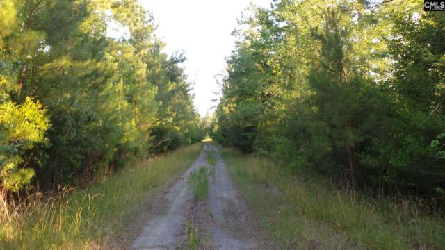 Hemmingway Road, Loris, SC 29568 (MLS #443145) :: EXIT Real Estate Consultants