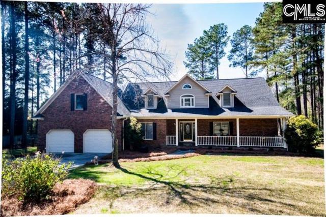 105 Jillian Place, Lexington, SC 29072 (MLS #443146) :: Home Advantage Realty, LLC