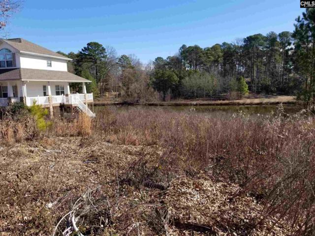 120 Beth Hope Lane, Columbia, SC 29210 (MLS #443233) :: EXIT Real Estate Consultants