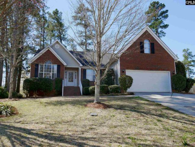 206 E Creek Court, Irmo, SC 29063 (MLS #443376) :: EXIT Real Estate Consultants