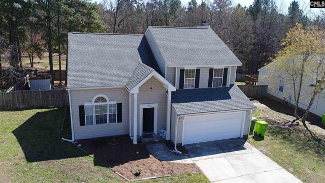 11 Oak Stand Court, Irmo, SC 29063 (MLS #443387) :: RE/MAX Real Estate Consultants