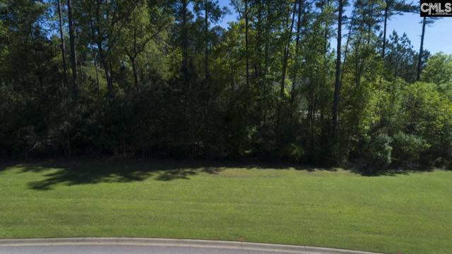 101 Water Links Drive, Chapin, SC 29036 (MLS #443421) :: EXIT Real Estate Consultants
