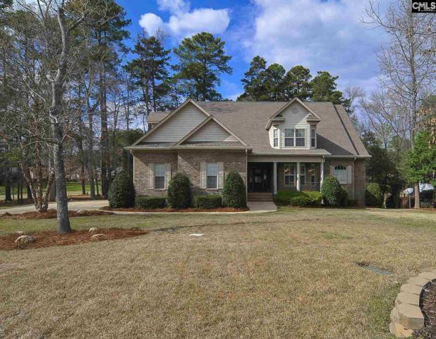 221 Pointe Overlook Drive, Chapin, SC 29036 (MLS #443461) :: RE/MAX Real Estate Consultants