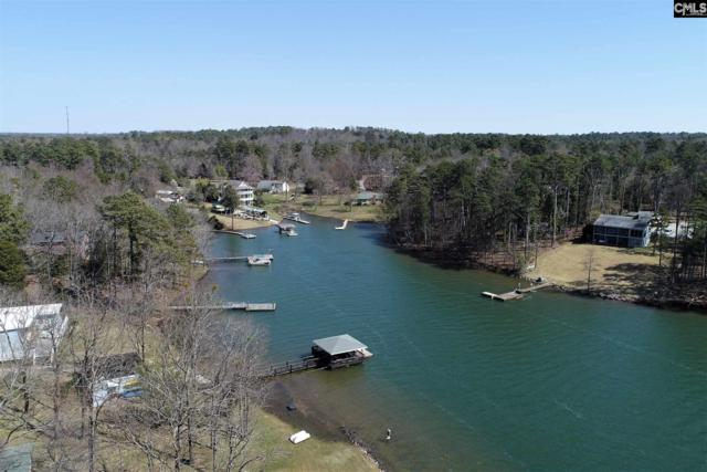 414 Wood Willow Point #2.69, Chapin, SC 29036 (MLS #443525) :: RE/MAX Real Estate Consultants