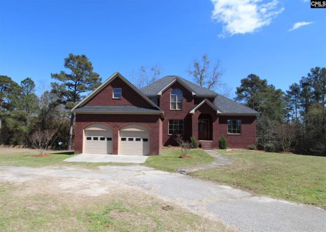 201 Lost Branch Road, Lexington, SC 29072 (MLS #443535) :: RE/MAX Real Estate Consultants