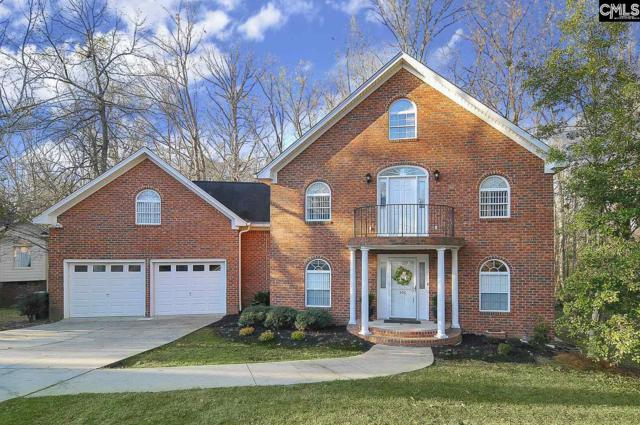 406 Shortbow Court, Columbia, SC 29212 (MLS #443539) :: RE/MAX Real Estate Consultants