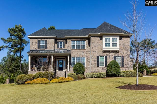 501 Patterdale Lane, Blythewood, SC 29016 (MLS #443594) :: RE/MAX Real Estate Consultants