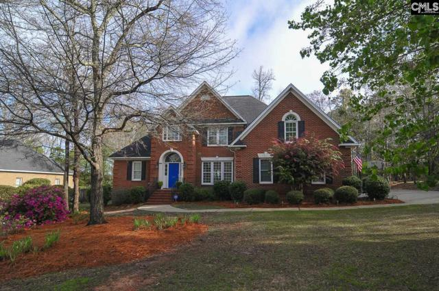 330 Poindexter Lane, Lexington, SC 29072 (MLS #443857) :: The Olivia Cooley Group at Keller Williams Realty