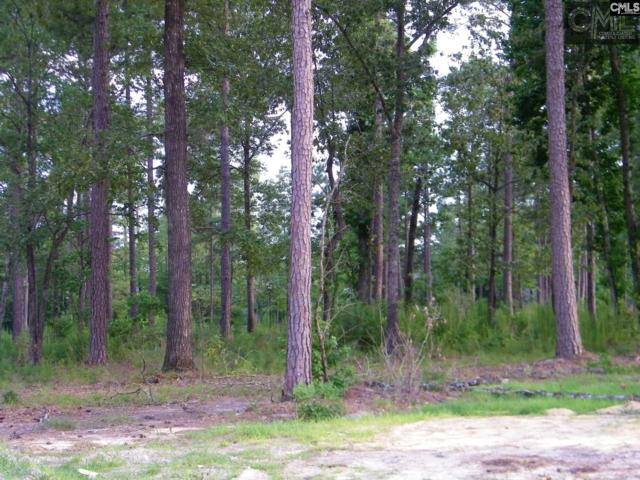 108 Old Camp Road # 17, Elgin, SC 29045 (MLS #443869) :: Home Advantage Realty, LLC