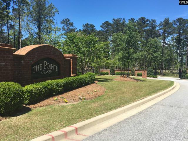 115 Old Camp Road # 11, Elgin, SC 29045 (MLS #443871) :: EXIT Real Estate Consultants