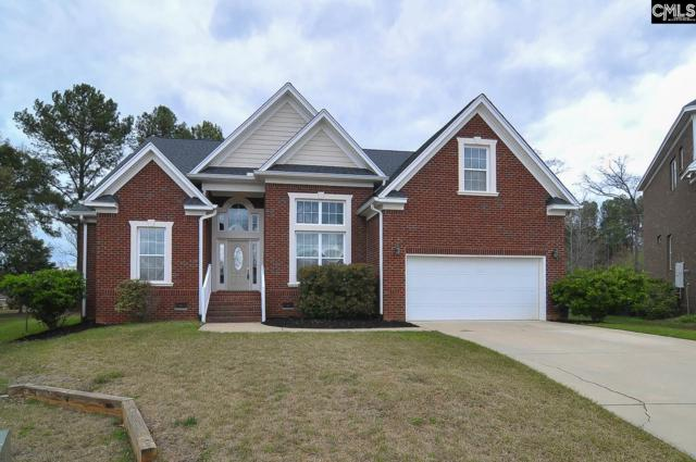 213 Irene Way, Lexington, SC 29072 (MLS #443894) :: RE/MAX AT THE LAKE