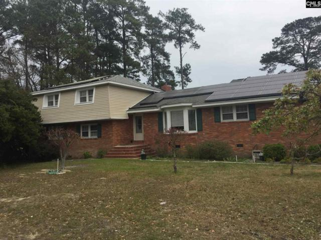 230 Windsor Point Road, Columbia, SC 29223 (MLS #443951) :: RE/MAX AT THE LAKE