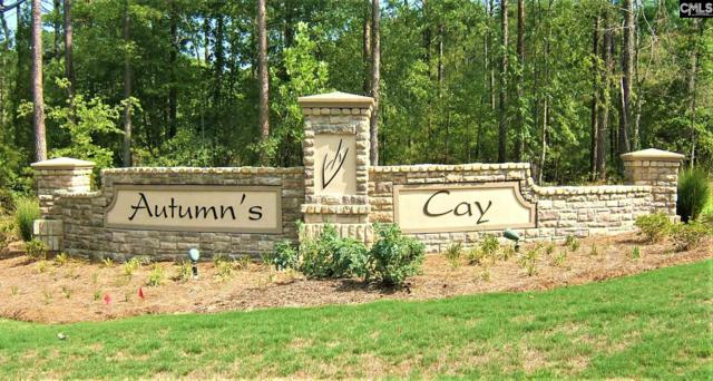 43 Red Leaf, Prosperity, SC 29127 (MLS #444248) :: Gaymon Realty Group