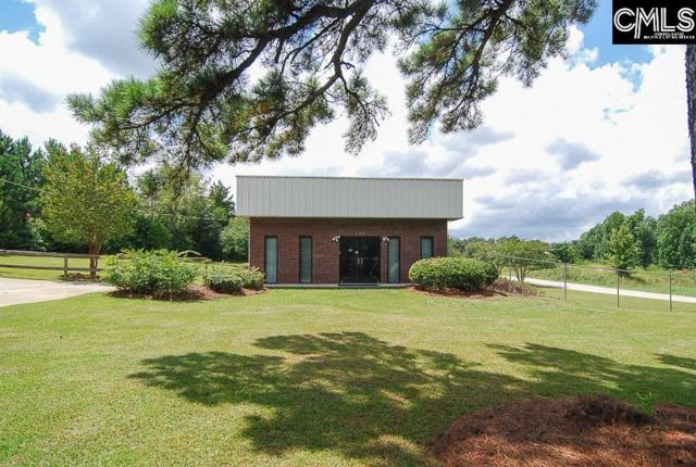 119 Waters Ferry Road, Gilbert, SC 29054 (MLS #444628) :: RE/MAX AT THE LAKE