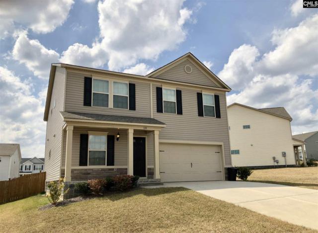 339 Deertrack Run, Lexington, SC 29073 (MLS #444708) :: EXIT Real Estate Consultants