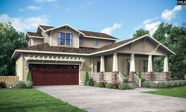 923 Battenkill Court, Lexington, SC 29072 (MLS #444720) :: Home Advantage Realty, LLC