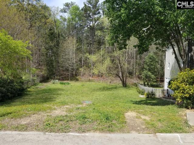 254 Torrington Road, Irmo, SC 29063 (MLS #444985) :: Home Advantage Realty, LLC