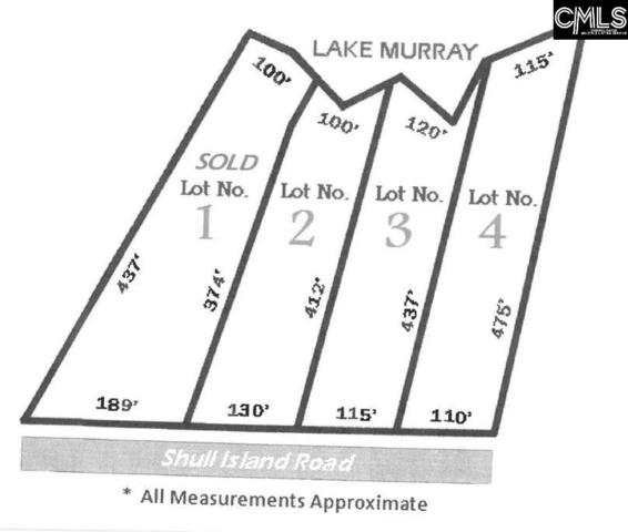 1223 Shull Island Road Lot 3, Gilbert, SC 29054 (MLS #445161) :: EXIT Real Estate Consultants