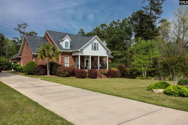 113 Pintail Lake Drive, Gilbert, SC 29054 (MLS #445266) :: EXIT Real Estate Consultants