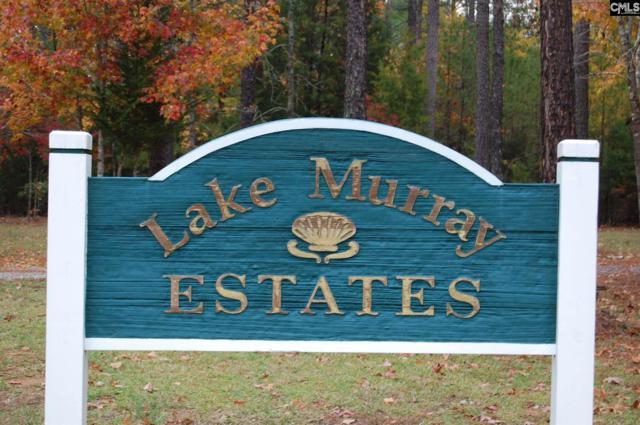 Tortoise Trail #127, Batesburg, SC 29006 (MLS #445427) :: EXIT Real Estate Consultants