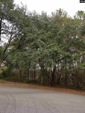 9 Enlow Court Lot 7, Columbia, SC 29223 (MLS #445577) :: RE/MAX AT THE LAKE