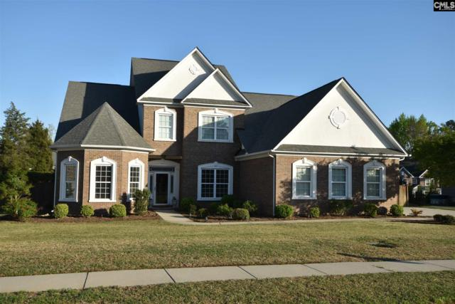 159 Lakeport Drive, Chapin, SC 29036 (MLS #445608) :: EXIT Real Estate Consultants
