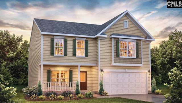 384 Explorer Drive #0008, Chapin, SC 29036 (MLS #445737) :: EXIT Real Estate Consultants