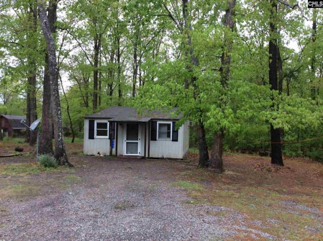 1560 Dreher Island Road, Chapin, SC 29036 (MLS #445743) :: The Olivia Cooley Group at Keller Williams Realty