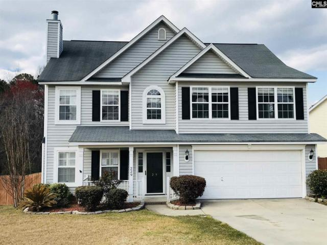 229 Kenmore Park, Columbia, SC 29223 (MLS #445927) :: EXIT Real Estate Consultants