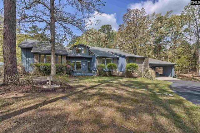 1212 Old Road, Chapin, SC 29036 (MLS #446002) :: Home Advantage Realty, LLC
