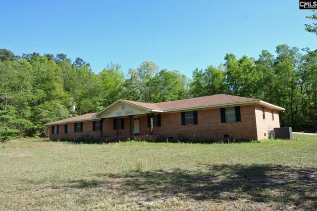 219 Lake Shore Circle, Wagener, SC 29164 (MLS #446036) :: Home Advantage Realty, LLC