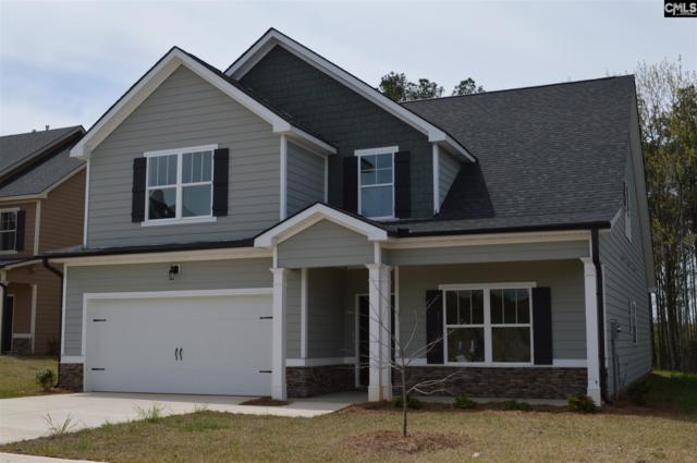 217 Lightning Bug Lane #204, Lexington, SC 29072 (MLS #446047) :: Home Advantage Realty, LLC