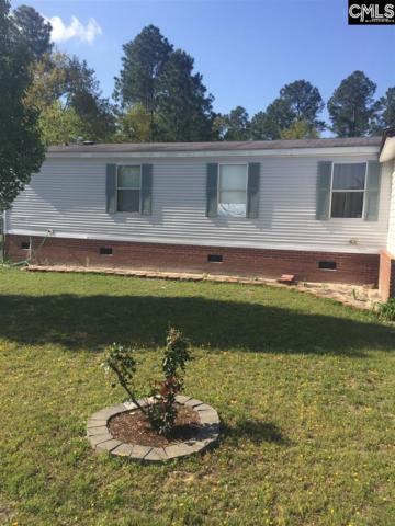 136 Peeler Road, Gaston, SC 29053 (MLS #446061) :: EXIT Real Estate Consultants