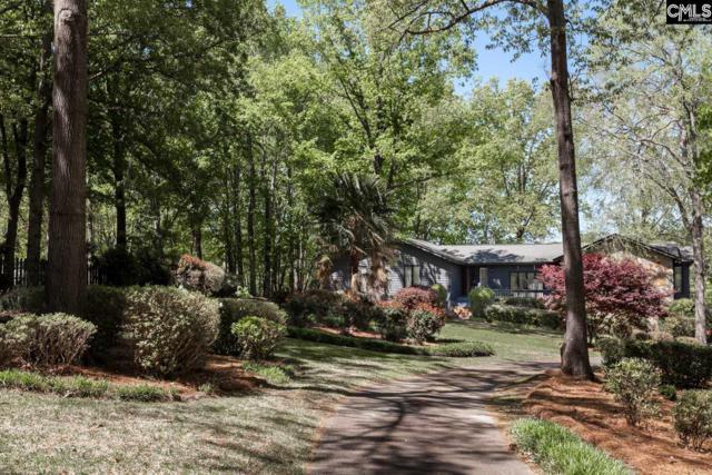 208 Pineview Church Road, Blythewood, SC 29016 (MLS #446103) :: Home Advantage Realty, LLC