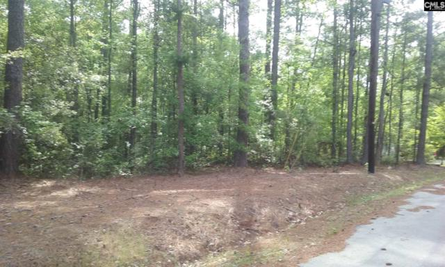 66 Roberson Street Lot#30, Columbia, SC 29203 (MLS #446219) :: EXIT Real Estate Consultants