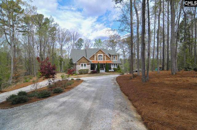 1028 Muddy Ford Road, Chapin, SC 29036 (MLS #446304) :: Home Advantage Realty, LLC