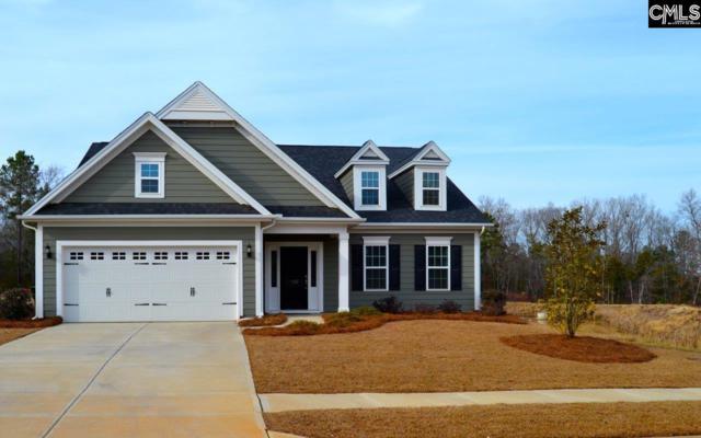 1167 Portrait Hill Drive, Chapin, SC 29036 (MLS #446338) :: EXIT Real Estate Consultants