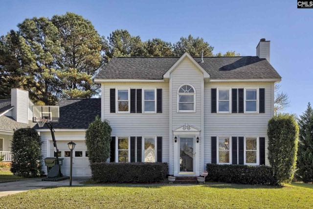 234 Aston Lane, Lexington, SC 29072 (MLS #446383) :: Home Advantage Realty, LLC