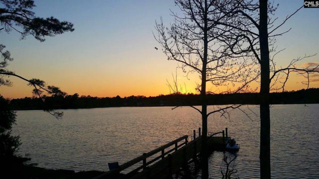 330 Osprey Lake Drive, Chapin, SC 29036 (MLS #446386) :: Home Advantage Realty, LLC