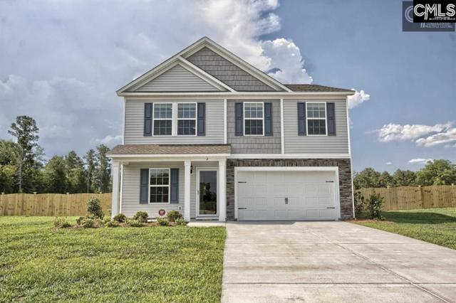 129 Sunsation Drive, Chapin, SC 29036 (MLS #446398) :: The Olivia Cooley Group at Keller Williams Realty
