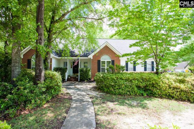 373 Heartwood Drive, Lexington, SC 29073 (MLS #446516) :: The Olivia Cooley Group at Keller Williams Realty