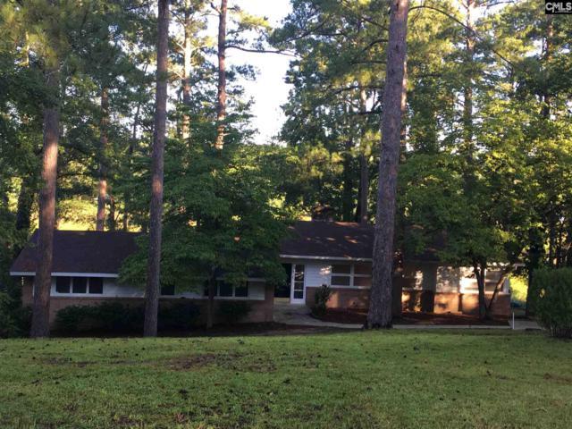 156 Lake Elizabeth Drive, Columbia, SC 29203 (MLS #446766) :: EXIT Real Estate Consultants