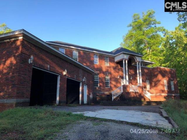 317 Wayne Mccaw Road, Irmo, SC 29063 (MLS #446780) :: EXIT Real Estate Consultants